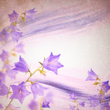 Klokbloemenachtergrond Stock Foto's
