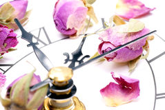 Klokken en rozen. stock afbeelding