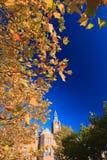 Klokketoren in de herfst Stock Foto's