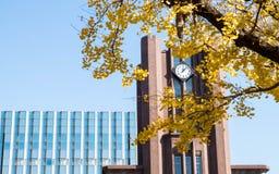 Klokketoren op Yasuda-Auditorium de Grote Zaal bij de Universiteit van Tokyo Nadruk op de klok door gele gingkotakken die wordt o Stock Afbeelding