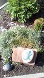 Klomb w parku i kamieniach rośliny i obrazków zwierzęta, zdjęcie royalty free
