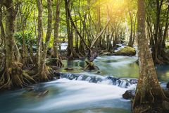 Klong lan siklawa, piękna siklawa w tropikalnym lesie deszczowym przy Kampan Obraz Stock
