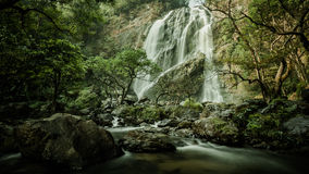 Klong Lan waterfall, evergreen forest Stock Images