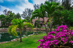 Klong Prao Resort. Cottages on the Bay in a tropical garden Royalty Free Stock Image