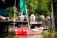 Klongs do thonburi de Banguecoque - opinião dos canais foto de stock