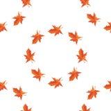 Klonowej jesieni spada liście wektor Fotografia Stock