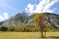 Klonowi drzewa w jesieni, Austria (Wielki Ahornboden) Zdjęcie Stock