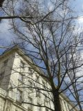 Klonowy drzewo bez liści przed trzy opowieści domem pod niebieskim niebem z bielu few chmurami Obrazy Royalty Free
