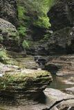 Kloof bij het Park Watkins-van de Nauwe vallei (NY) Staat F Stock Foto