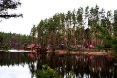 Klooster in het bos, de Oekraïne Stock Afbeeldingen