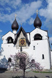 Klooster marfo-Mariinsky van Genade in Moskou Bloeiende kersenboom Royalty-vrije Stock Afbeeldingen
