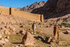 Klooster van St Catherine en bergen dichtbij van de berg van Mozes, Sinai Egypte Royalty-vrije Stock Afbeeldingen