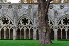 Kloosters, de Kathedraal van Salisbury, Salisbury, Wiltshire, Engeland Royalty-vrije Stock Afbeeldingen