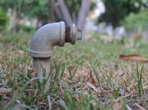 Klopfen Sie Garten Lizenzfreies Stockfoto