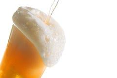 Klopfendes blondes Bier Lizenzfreie Stockbilder