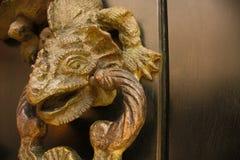 Kloppers gevormde draak, detail. Colombia. Stock Foto
