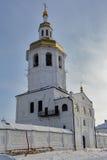 Kloster Abalak Znamenski Russland Lizenzfreie Stockfotos