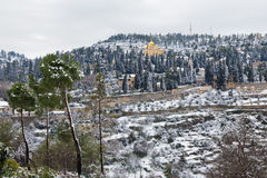 Kloster Jerusalems Moskovia im Schnee Lizenzfreie Stockbilder