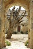 Kloster Kreta-Arkadi Stockbilder