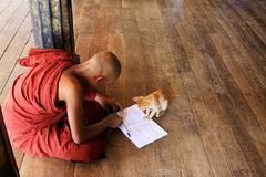 Kloster Mönch-Play Withs Cat In Shwe Yan Pyay, Nyaungshwe, Myanmar Lizenzfreies Stockbild