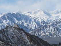 Kloster Namgyal Tsemo im Schnee stockfotografie