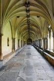 Kloster Norwich domkyrka, Norfolk, England Arkivfoto