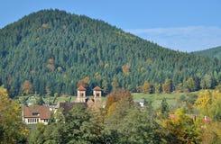 Klosterreichenbach svart skog, Tyskland Royaltyfria Foton