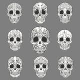 Klotter Sugar Skull Collection Royaltyfria Bilder
