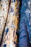 Klotz eingestuft in einem großen Stapel, Wartung Tischler, um alte Häuser zu bauen stockfoto