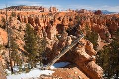 Klotz sieht wie eine riesige Eidechse, Bryce Canyon, Utah, USA aus Stockbilder