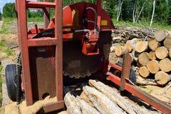 Klotz Slasher mit frisch Schnitt und angehäuftem Holz Lizenzfreie Stockfotos