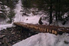 Klotzbrücke über eisigem Wasser Stockfotografie