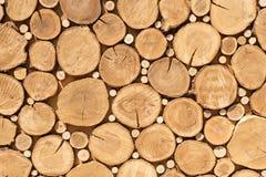 Klotzschnitte schließen oben Stapel Protokolle Abschluss oben Klotzschnitte vorbereitet f?r Kamin woodpile Säge schneidet Entwurf stockfotos