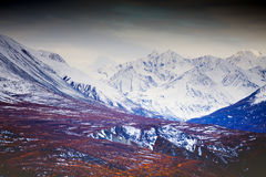 Kluane National Park and Reserve, Valley and Mountain Views Stock Image