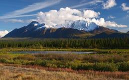 Kluane national park royalty free stock image