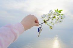 Klucz nowy dom i gałąź czereśniowi okwitnięcia w ręce Obrazy Royalty Free
