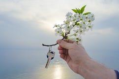 Klucz nowy dom i gałąź czereśniowi okwitnięcia w ręce Zdjęcie Stock