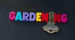 Klucz uprawiać ogródek Obrazy Stock