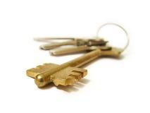 klucze do domów Obrazy Stock