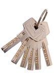 klucze do odłogowania Obraz Stock