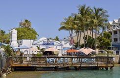 kluczowy akwarium zachód zdjęcia royalty free