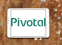 Kluczowy firma softwarowa logo Fotografia Royalty Free
