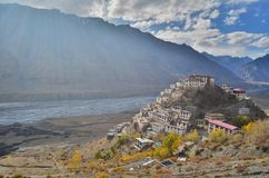 Kluczowy monaster, Tybetański Buddyjski monaster lokalizować w India Zdjęcie Royalty Free