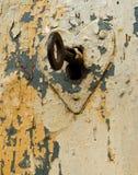 kluczowy serca keyhole Fotografia Royalty Free