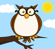 Kluges Owl On Tree Cartoon Character Lizenzfreie Stockbilder