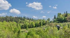 Kluizenaar` s paradijs in een bergbos stock foto