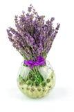 Klumpa ihop sig naturliga blommor för lavendel i bunke med vatten Royaltyfri Foto