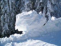 Klumpa sig av snö på bakgrunden av granträd Arkivfoton