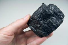 Klumpen der rohen Kohle in der Hand Lizenzfreie Stockbilder