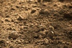 Klumpen des trockenen braunen Bodens, Weichzeichnung stockfotografie